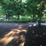 津久井城山公園 通路