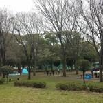 篠崎公園 (16)