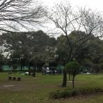 篠崎公園 (17)
