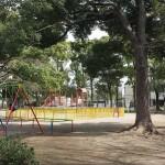 篠崎公園 (22)