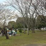 篠崎公園 (10)