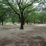 木場公園 バーベキュー場