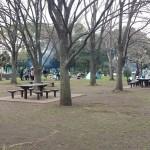 篠崎公園 (24)