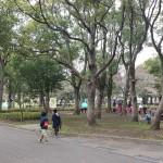篠崎公園 (4)