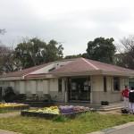 篠崎公園 (20)