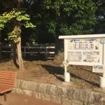海老名運動公園 ポニー乗馬案内