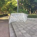 海老名運動公園 通路