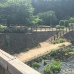 綾南公園 川辺