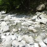 足柄大滝キャンプ場 川