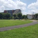 永田公園 道