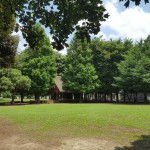 関公園 自然