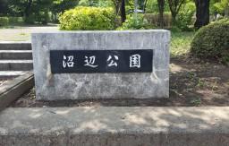 沼辺公園 入口