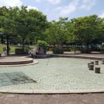 沼辺公園 広場