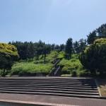みなとが丘ふ頭公園 階段