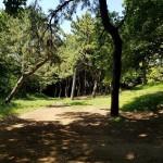 みなとが丘ふ頭公園