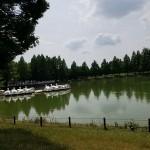 川越水上公園 池