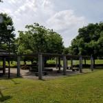 川越水上公園 芝生広場