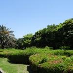 稲毛海浜公園 花壇