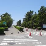 稲毛海浜公園 駐車場