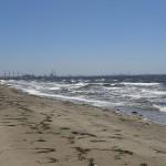 稲毛海浜公園 浜辺