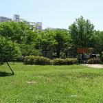 新左近川親水公園 芝生広場