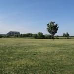 荒川戸田橋緑地公園 芝生