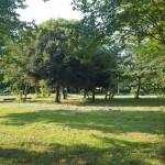 幸手綜合公園 芝生