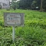 さぎ山記念公園 注意書き