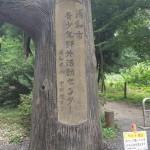 さぎ山記念公園 青年センター入り口