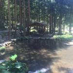 芦川オートキャンプ場内池
