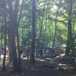 白州・白尾の森名水公園ベルガキャンプ場
