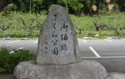 御坂路さくら公園石碑