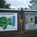 村営山中湖キャンプ場見取図
