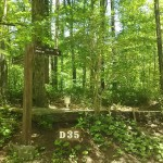森と水のテーマパーク丘の公園オートキャンプ(電源あり)