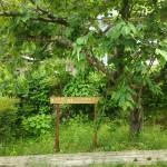 津原キャンプ場案内表示