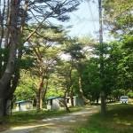 本栖湖キャンプ場遊歩道
